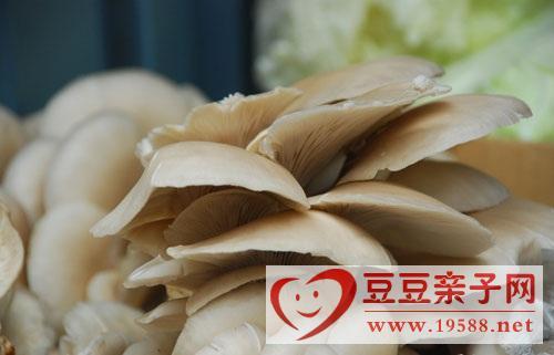 产后吃蘑菇能预防产后发胖,产后滋补饮食